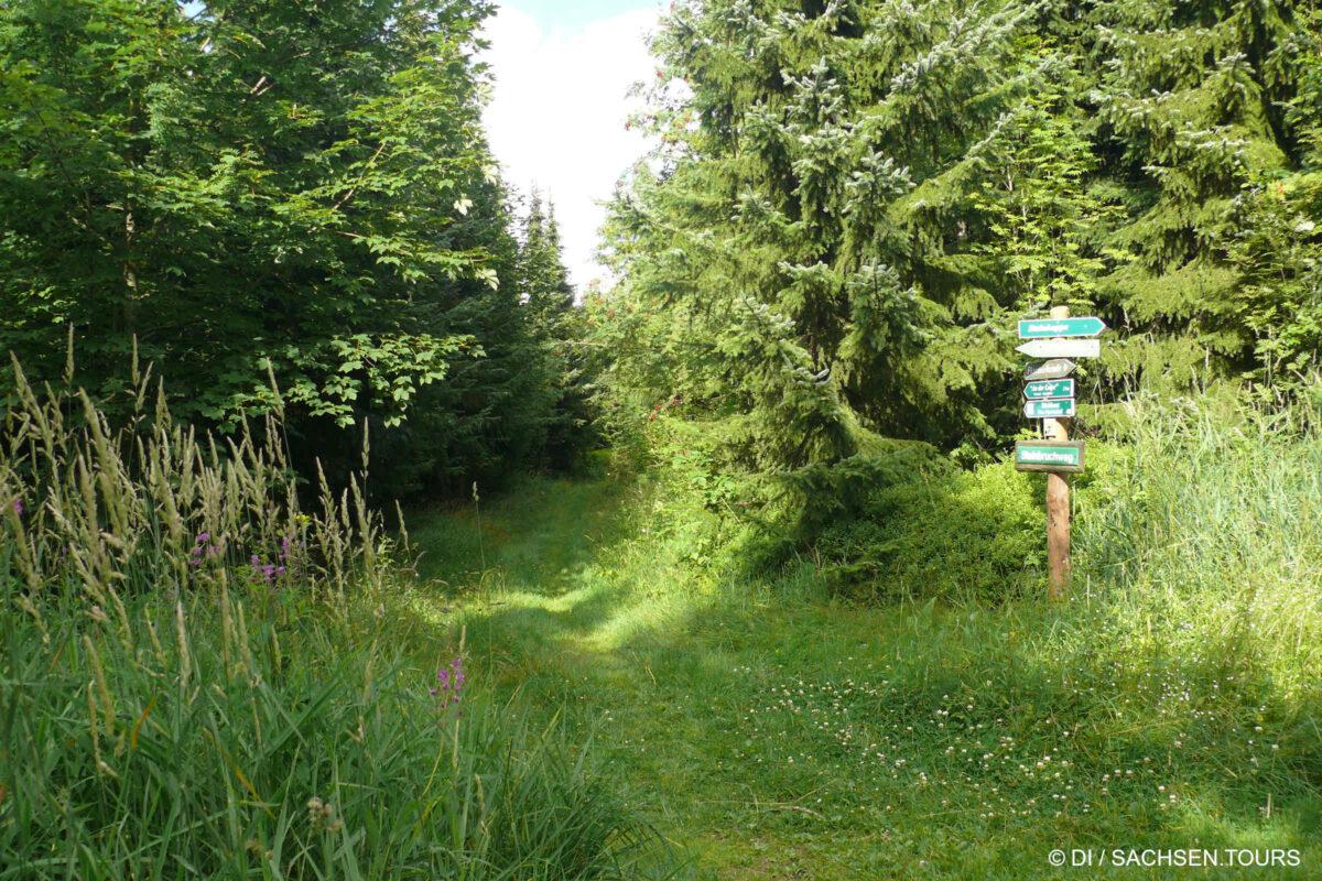 Wanderwege Holzhau