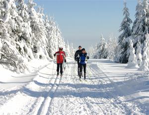 Langlauf im Osterzgebirge rund um Altenberg - 30 km gut gespurtes Loipennetz